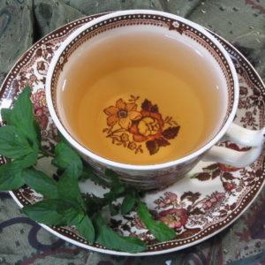 Moroccan Breeze Mint Green tea